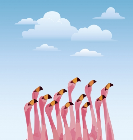 Flamingo looking sky  Files Vector