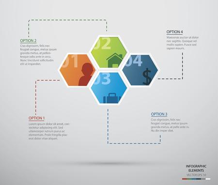 Hexagon infographicFiles  Vector