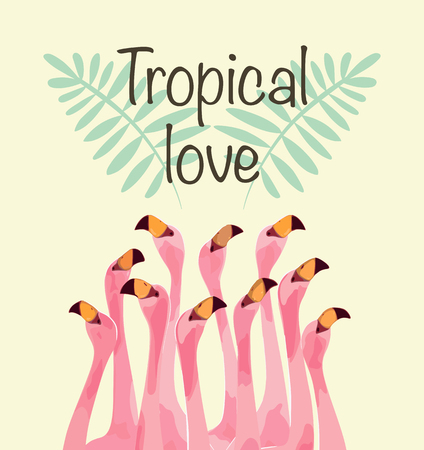 Flamingo illustration for Tropical love