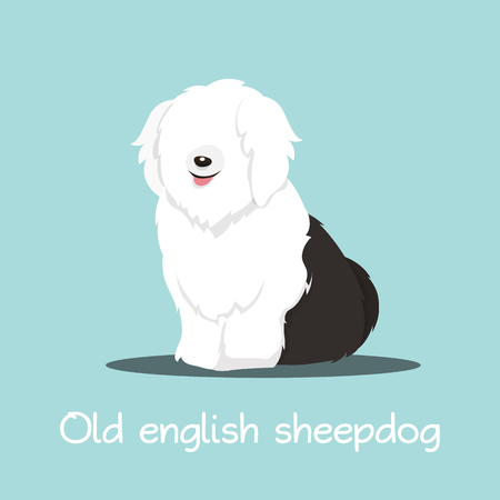 Cute old english sheepdog illustration graphic design.vector Ilustrace