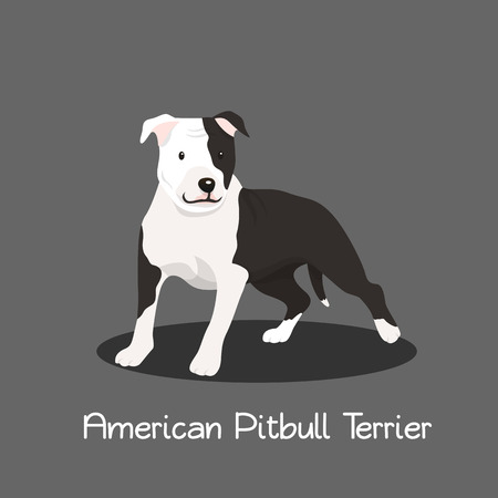 American Pitbull Terrier pet cartoon illustration graphic design Illusztráció