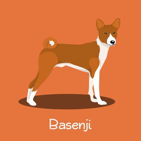 An illustration depicting a cute Basenji dog cartoon.vector Illustration