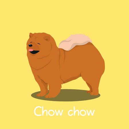 An illustration depicting a cute Chow chow dog cartoon.vector
