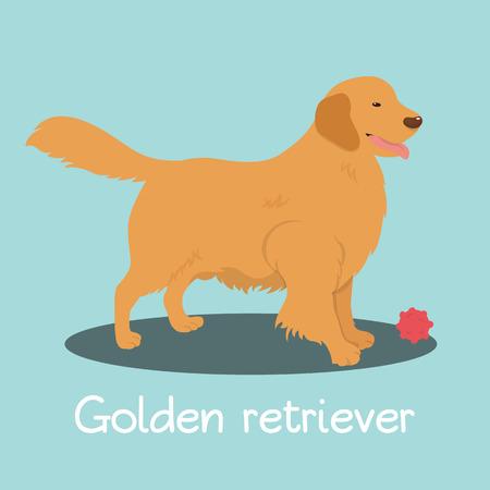 An illustration depicting Golden retriever dog cartoon.vector