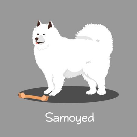 An illustration depicting Samoyed dog cartoon.vector Illustration