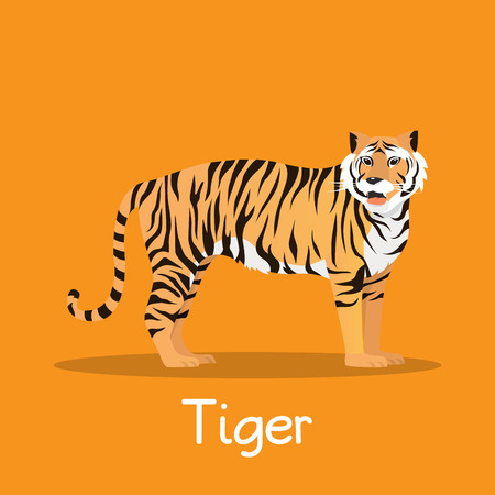 Fierce tiger in Asia illustration desian on orange background.vector