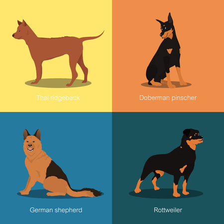 Set of dogs different breed vector illustration