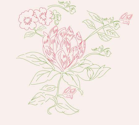 A vector illustration of of beautiful pink flower & leaf. Illustration