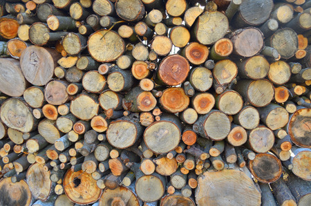 woodpile: Background of firewood stacked in the woodpile Stock Photo