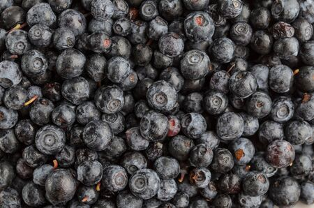 Blueberry antioxidant superfood