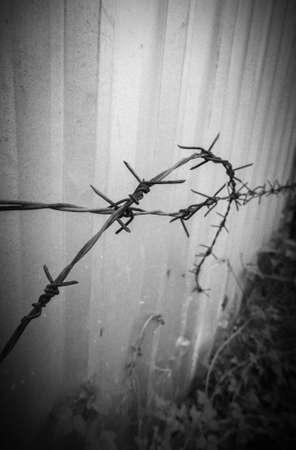 barbed wire Banco de Imagens
