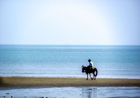 Horse and rider roaming on the beach with water around them  Can be used to depict a journey or travellers photo