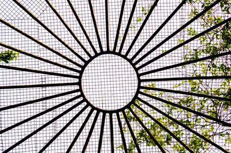 grid pattern: Abstract pattern of roof with circle, lines and square grid with plants growing on it