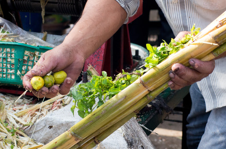 juicing: Person preparing a sugarcane with mint and lemon for juicing. The juice is a popular drink served in the hot indian summer Stock Photo