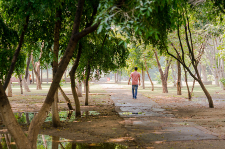 unwind: Man walking a dirt path with trees all around him. Shows a leisurely walk in the park or forest to unwind