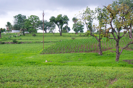 bordered: Monsoon clouds over small farms and lush green fields bordered by trees