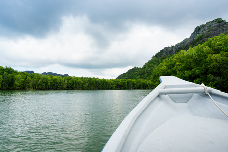 geoforest: In boat shot of river cruise in Kilim Park Langkawi Stock Photo