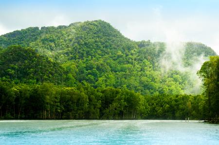 geoforest: Tree covered hills on riverside in Langkawi