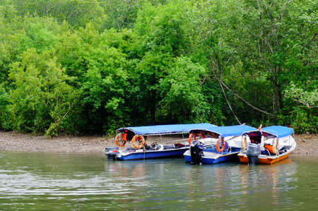 geoforest: three blue boats parked on a sandy bank of a river. The thick forest starts just as the small bank ends. Shot in Langkawi Malaysia Stock Photo