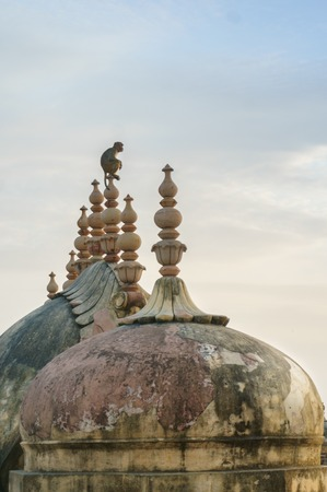 monkey sitting on the top of a spire on a dome on an ancient bui
