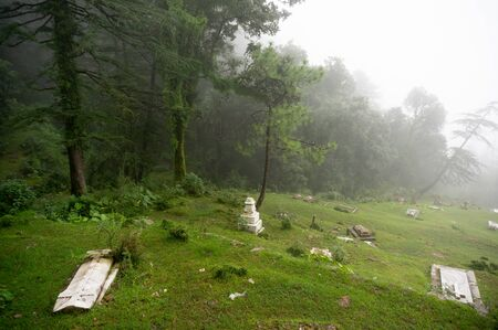 shot of a foggy graveyard on a hill slope with trees in the background fading into the distance.