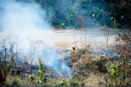 shot of crops thrash garbage being burnt on the side of a road and causing pollution with smoke and dust in the air of delhi jaipur and more reducing the air quality. Shows the daily activities that are causing delhi NCR to have it's worst crisis ever in terms of air quality in winters Фото со стока