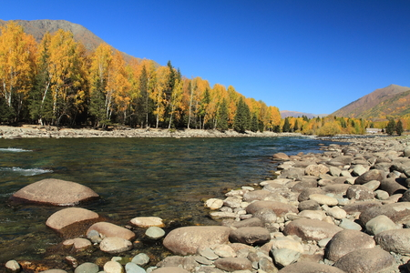streamlet: this is the river and autumn leaves with blue sky Stock Photo