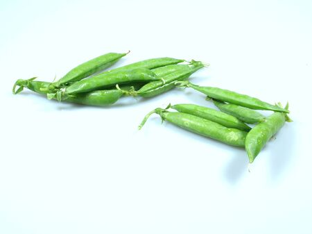 green pea pods on a bluish background