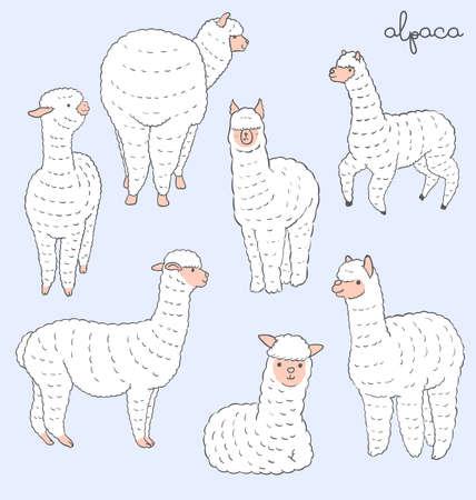 Alpaca set Illustration