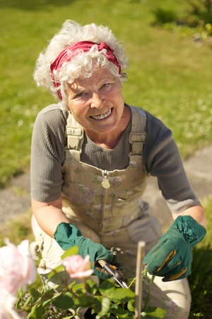 Lovely senior woman taking care for plants in her backyard garden - Outdoors photo