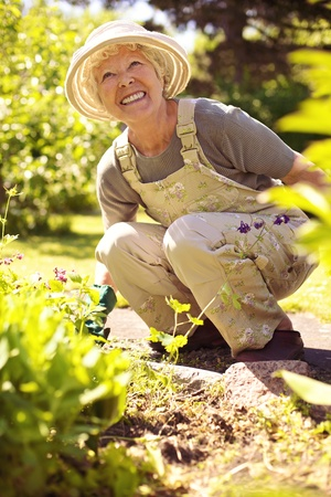 Senior woman happily working with plants in her garden photo