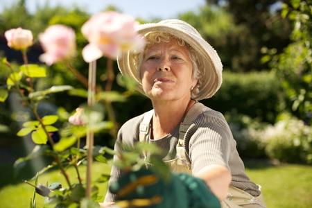 gardening equipment: Elderly woman wearing sun hat looking at flowers in backyard garden - Outdoors