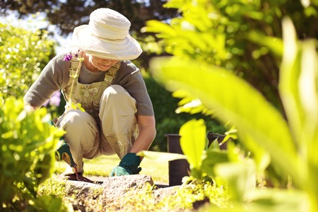彼女の裏庭の庭ではガーデニングのツールと年配の女性