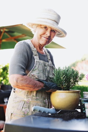 Happy senior woman planting new plant in terracotta pot on a counter in backyard photo