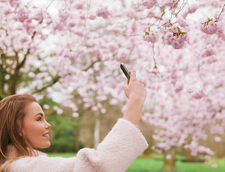 Attractive young woman taking pictures of pink blossom flowers at a spring blossom park. Beautiful caucasian female shooting flowers with her mobile phone. photo