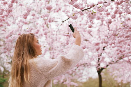 Beautiful young female taking pictures of pink blossom flowers at a spring blossom park. Beautiful caucasian woman shooting flowers with her mobile phone. photo