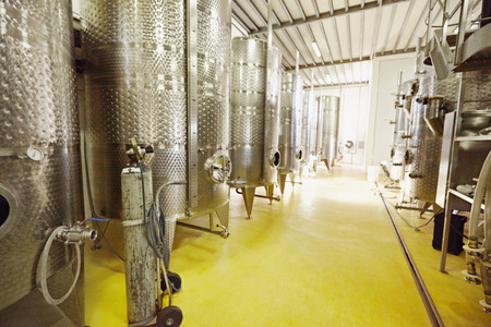 vats: Stainless steel wine vats in a row inside the winery. Equipment of winemaker with steel barrels for fermentation.