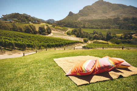generic location: Small carpet with pillow on a hill with view of fields of grape vines and mountain on a beautiful summer day.