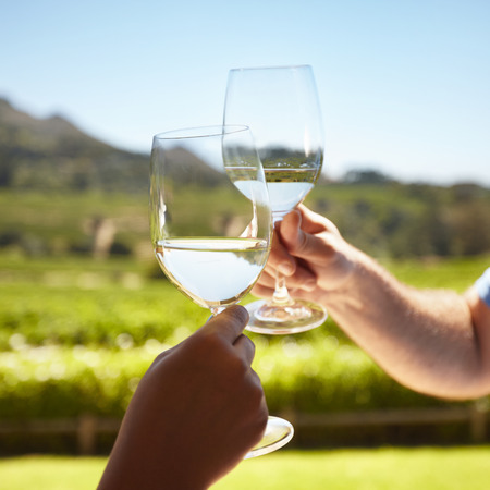 Close up of hands toasting wine outdoors. Celebrating with white wine with vineyard in background. Standard-Bild