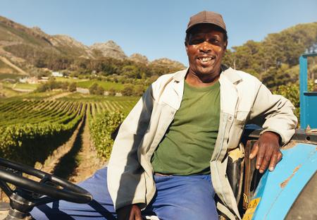 ouvrier: Agriculteur qui conduit un tracteur dans les champs pendant la récolte dans la campagne. Vignoble travailleur assis sur son tracteur en souriant.
