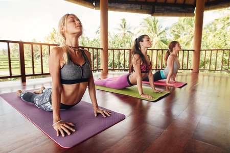 Fitness women practicing the cobra pose during yoga class in a health center. Fitness group doing cobra pose in row at the yoga class. Stock Photo