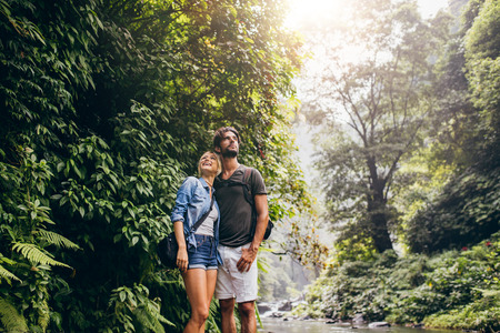 standing together: Outdoor shot of loving young couple standing together by a mountain stream in the rainforest and looking at a view.