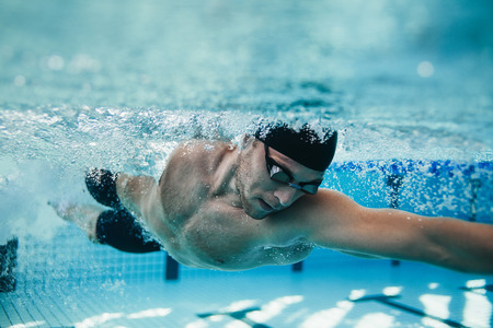 water sports: Underwater shot of fit swimmer training in the pool. Professional male swimmer inside swimming pool.