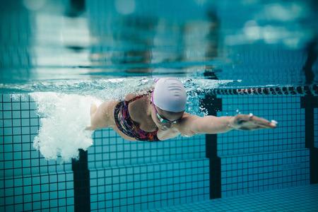 Tiro subacuático de la natación de la mujer atleta en la piscina. Joven de natación del estilo crol en una piscina. Foto de archivo - 64925749