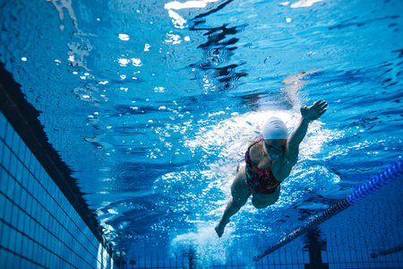 Underwater shot of young woman swimming the front crawl in pool. Fit female athlete swimming in pool. Banco de Imagens