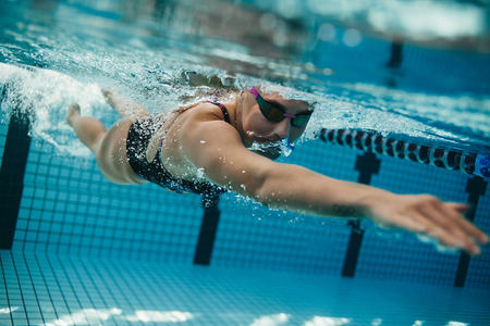 sportsperson: Underwater shot of young sportswoman swimming in pool.  Female swimmer inside swimming pool.