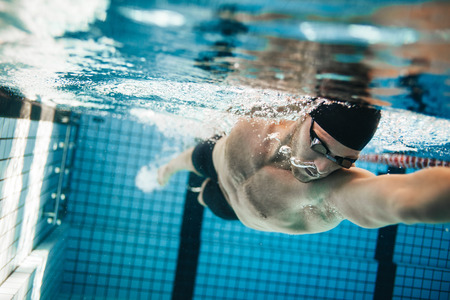 Fit swimmer training in the swimming pool. Professional male swimmer inside swimming pool. 스톡 콘텐츠