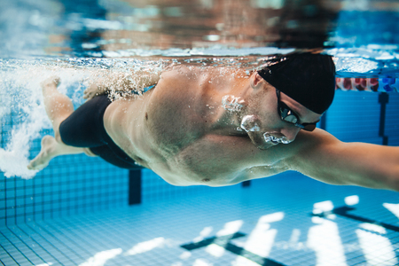 Professional male swimmer swimming in pool. Underwater shot of young sportsman practising for competition in pool. 스톡 콘텐츠