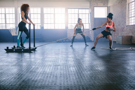 Shot of woman standing on sled with other pulling in gym. Three young females doing physical training at healthclub. Reklamní fotografie