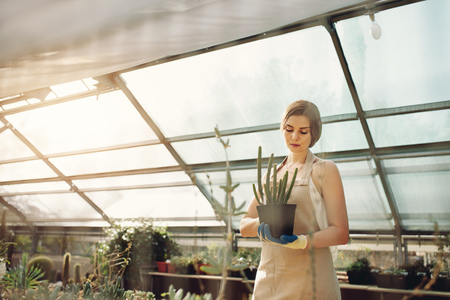 Beautiful young lady in plant nursery holding cactus. Female gardener working in greenhouse.